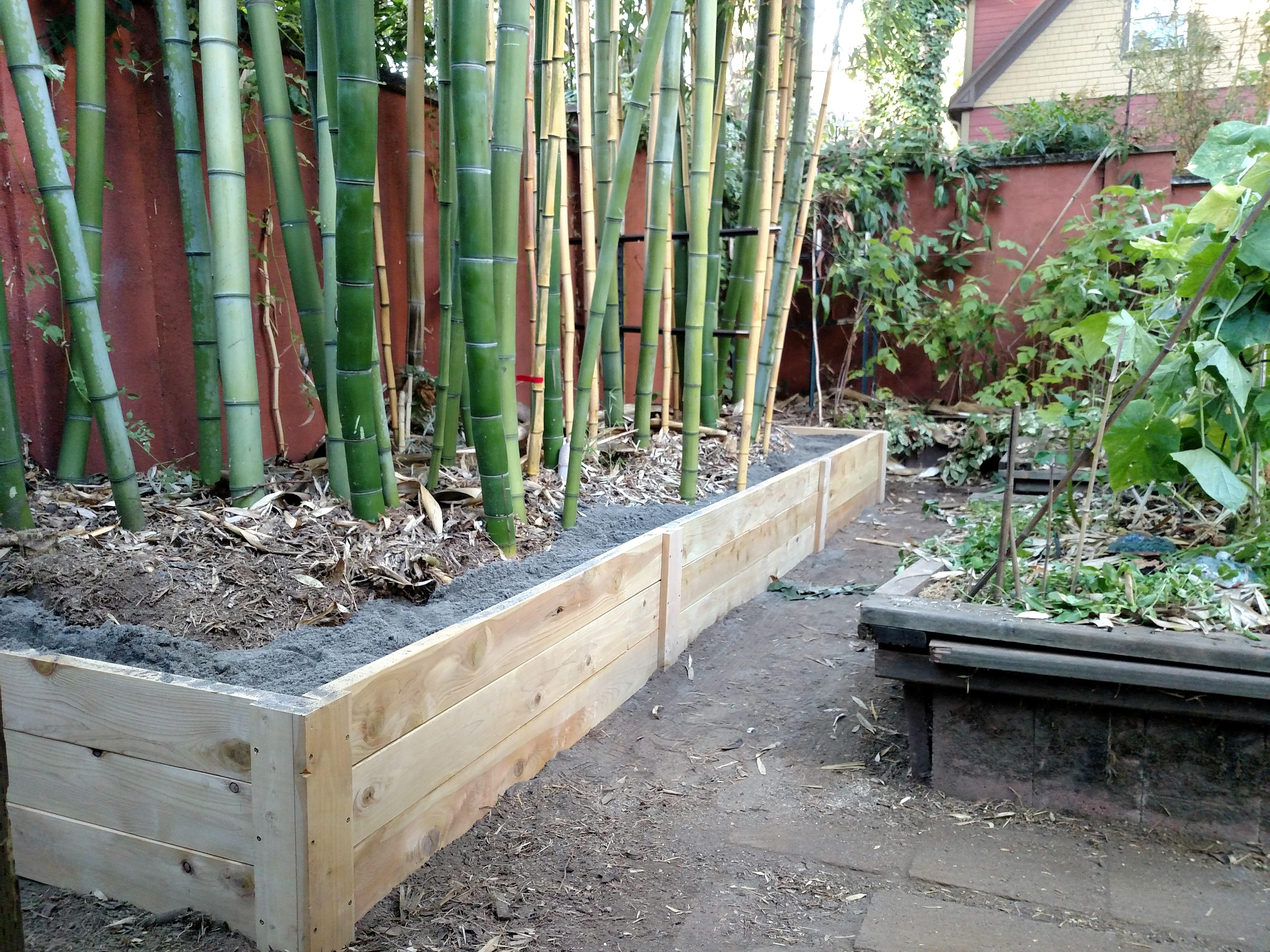 This bamboo was poorly contained so we removed the outliers and got it back into shape.  New raised bed installed, to be maintained with a pruning trench.
